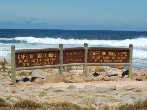 Full Day Cape Point & Cape Of Good Hope Tour