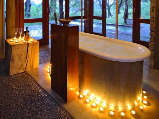 Dulini Private Game Reserve – Sabi Sands