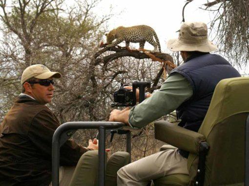 7 Day Kruger National Park & Sabi Sands Safari