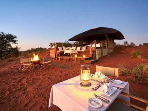 African Honeymoon Highlights