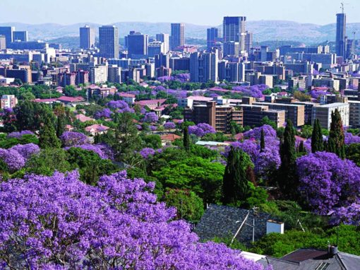 Half-Day Pretoria Jacaranda City Tour