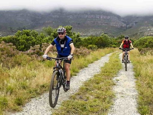 Table Mountain Biking Experience