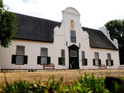 Heart of Cape Town Museum & Groot Constantia Wine Experience
