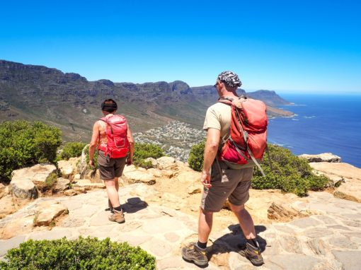 Table Mountain Hiking Experience