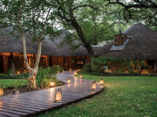 3 Reasons to Indulge in a Safari at Dulini