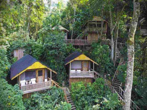Buhoma Lodge – Bwindi – Uganda