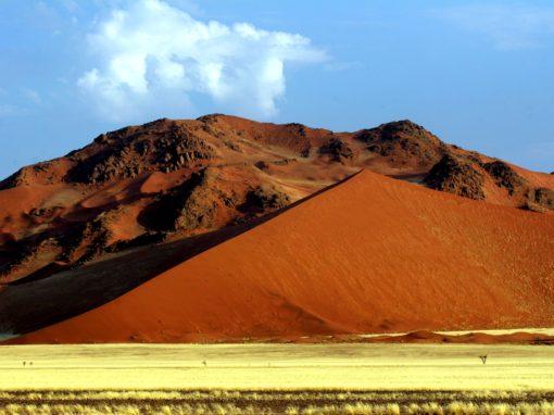 9 Day Namibian Highlights