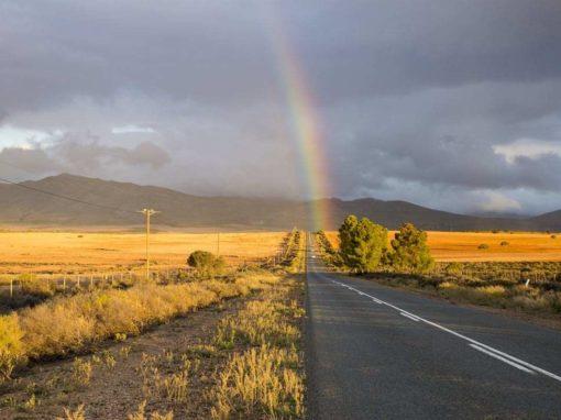 6 Day Garden Route, Safari & Winelands