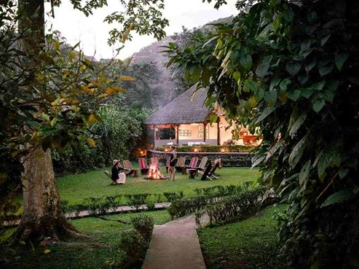 Sanctuary Gorilla Forest Camp  – Uganda