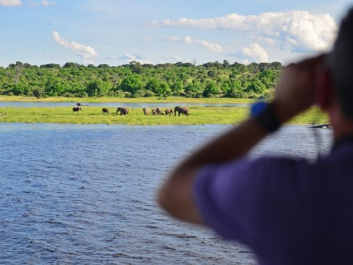 3 Nights Zambezi Queen Experience