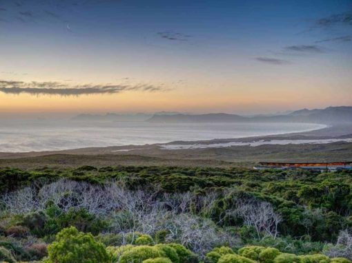 Grootbos Forest Lodge