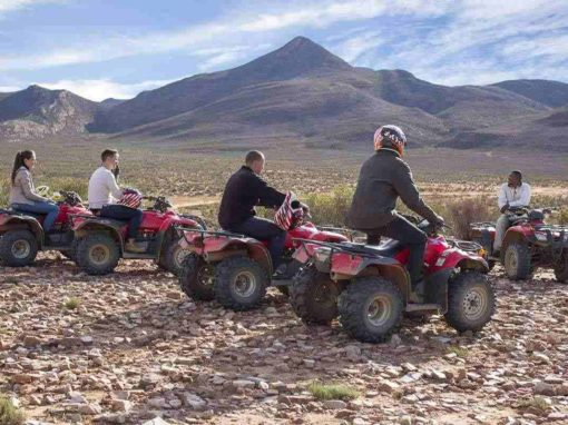 Full Day Quad Bike Safari