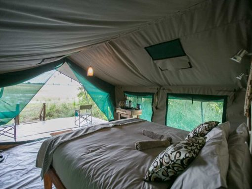 Bushman Plains Camp – Okavango Delta