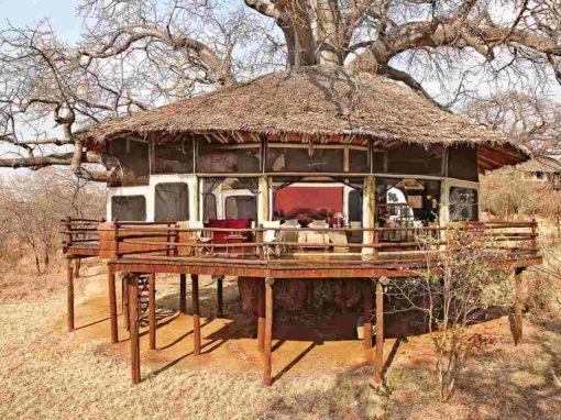 Tarangire Treetops  – Tanzania