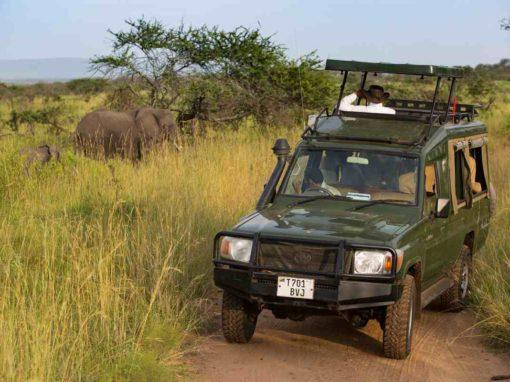 10 Day Kenya & Tanzania Safari