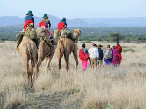 6 Nights Pinnacles, Rivers & Plains  – Karisia, Kenya