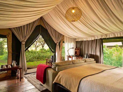 Lemala Ngorongoro Luxury Tented Camp – Tanzania