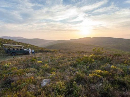 Grootbos Private Nature Reserve Special Offer