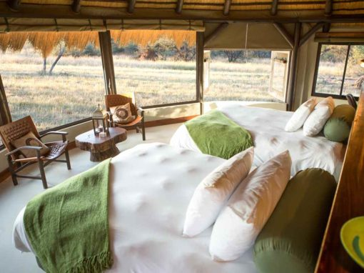 Okonjima Bush Camp – Central Namibia