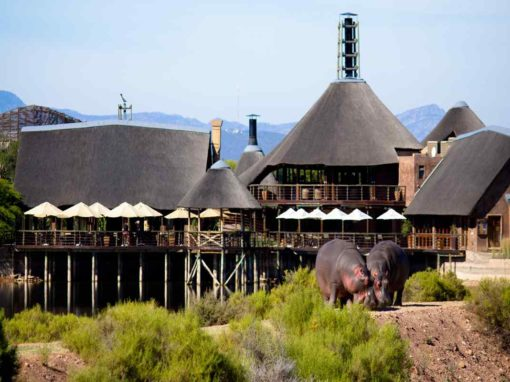 Buffelsdrift Game Lodge – Oudtshoorn