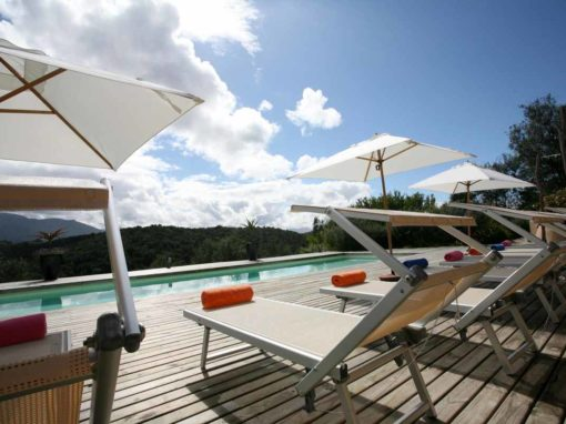 Hog Hollow Country Lodge – Plettenberg Bay