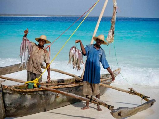 13 Days Luxury Tanzania Beach & Bush Safari