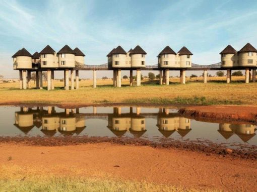 Salt Lick Safari Lodge Kenya